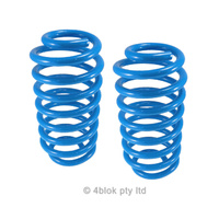 Lovells TS 4 Cyl Rear Springs Pair