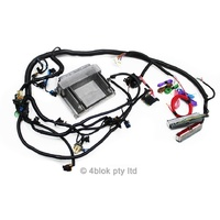 LS1 Gen 3 5.7 Wiring Loom & ECU Conversion Suit Hot Rod Drift Car Retro Fit Universal